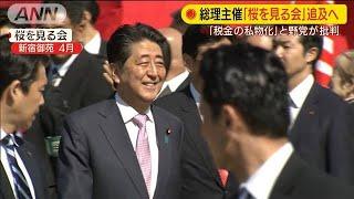 """総理主催の「桜を見る会」 """"税金の私物化""""で追及(19/11/11)"""