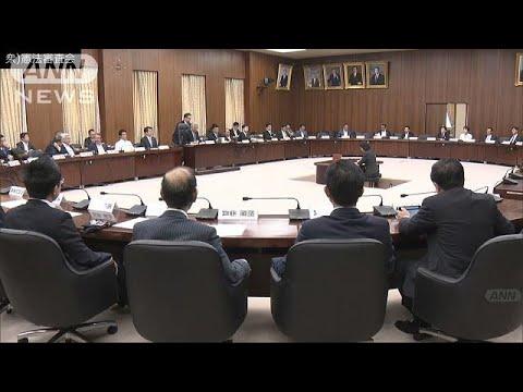 進まぬ憲法論 国民投票法改正案の質疑・採決見送り(19/05/16)