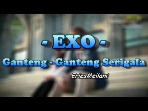 Ganteng Ganteng Serigala (EXO Version)