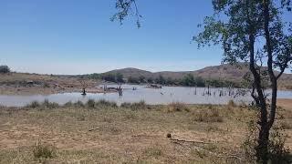 南アフリカ共和国 世界一危険な都市 ヨハンスブルグから230km ピラネスバーグ国立公園
