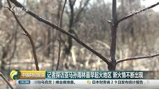 [中国财经报道]记者探访亚马孙雨林最早起火地区 新火情不断出现| CCTV财经