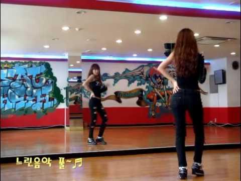 T-ara-I Go Crazy Because Of You(dance Tutorial Part3).flv
