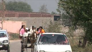 Villagers riding on horse carriage in Uttar Pradesh