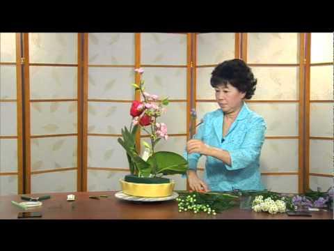 Cam Hoa - Xuan Thanh Binh