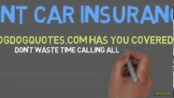 car insurance companies in flint mi
