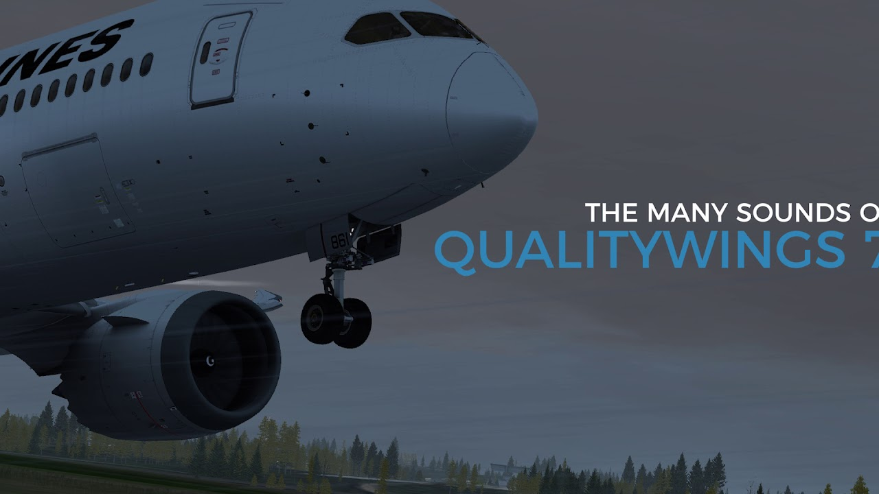 Quality Wings 787 Review