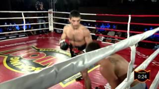PRO Boxing Show UBP. 06/11/2016. Artem Dalakian, UKR - Jozsef Ajtai, HUN
