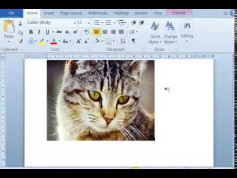 Cara Edit dan Menyimpan Gambar di MS Word - YouTube