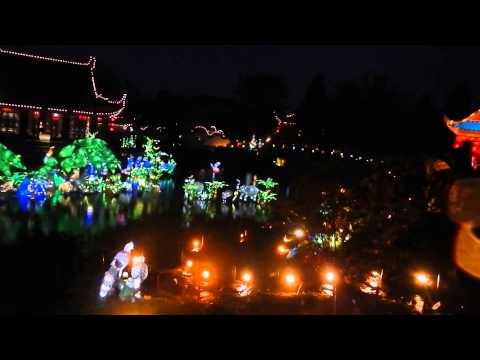 Jardin de chine by night 311013
