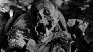 Video The Bombing of Dresden download MP3, 3GP, MP4, WEBM, AVI, FLV November 2017
