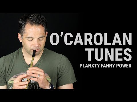 Tin Whistle Lesson - Planxty Fanny Power (O'Carolan)