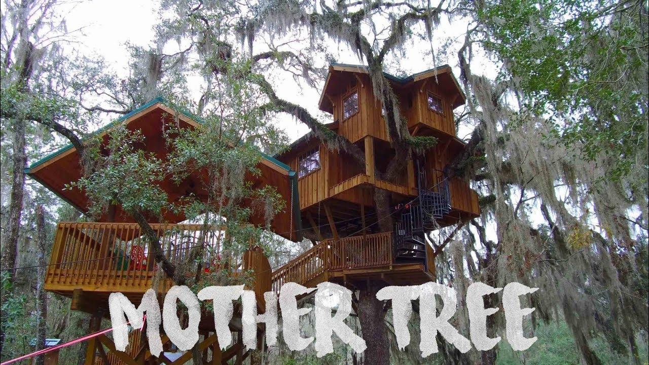 Tree House Tour Tiny House Living On Suwannee River 61 Youtube