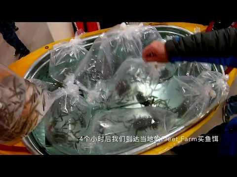 2018 Brainerd Jaycees Fishing Extravaganza