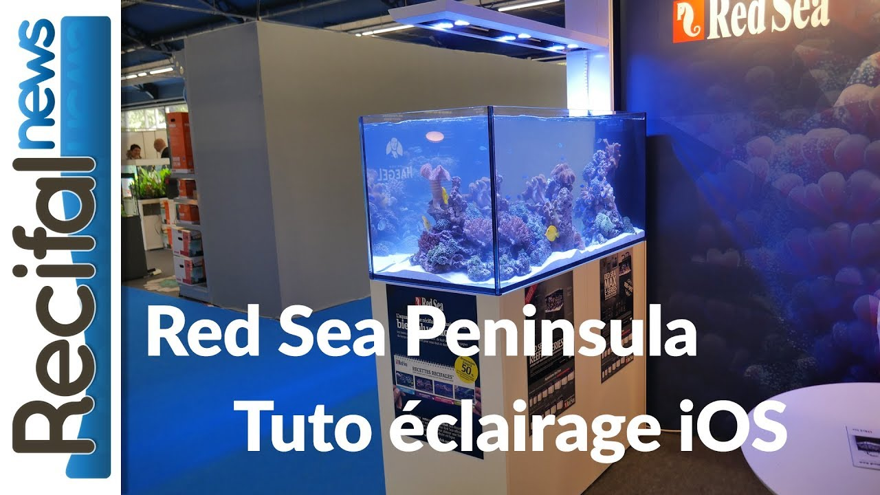 Red Sea Peninsula Tuto Eclairage Led Sur Ios Pour Aquarium Recifal