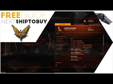 Elite Dangerous Guide - What Ship Should I Buy Next?