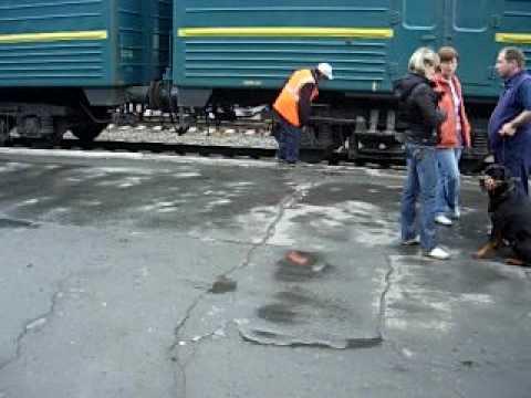 Trans Siberian Station Novosibirsk