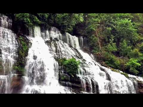 Tennessee Waterfall Tour