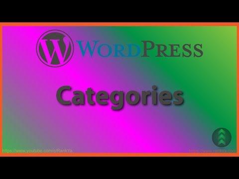 WordPress Categories - 동영상
