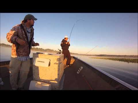 Ocala Bass Fishing Guide Service on Rodman Reservoir