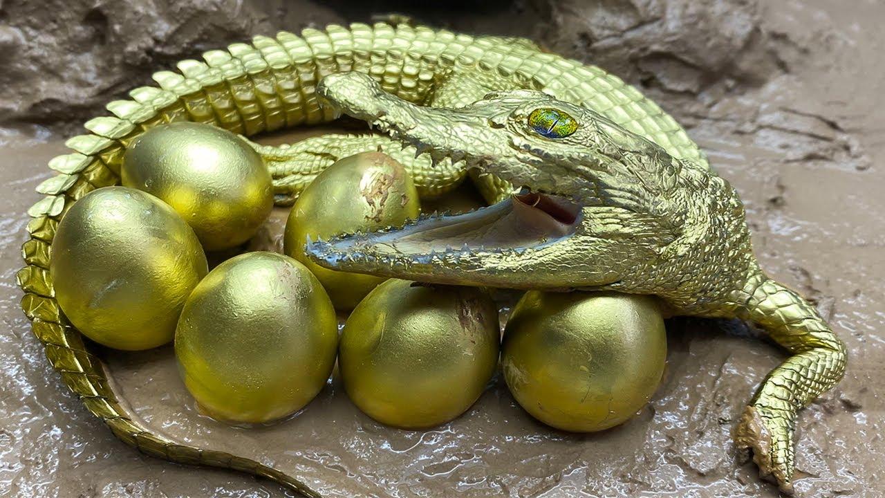 Stop Motion ASMR - The Golden Crocodile Trap Primitive Cooking Experiment Unusual Underground