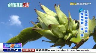 台灣火龍果頭好壯壯 十萬人盛讚嘗鮮《海峽拚經濟》
