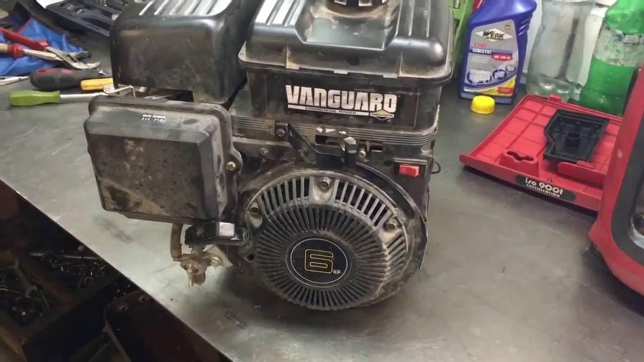 Ремонт двигателя briggs stratton своими руками фото 938