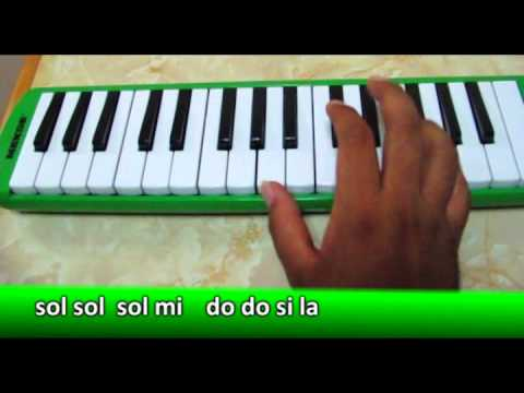how to choose a melodica