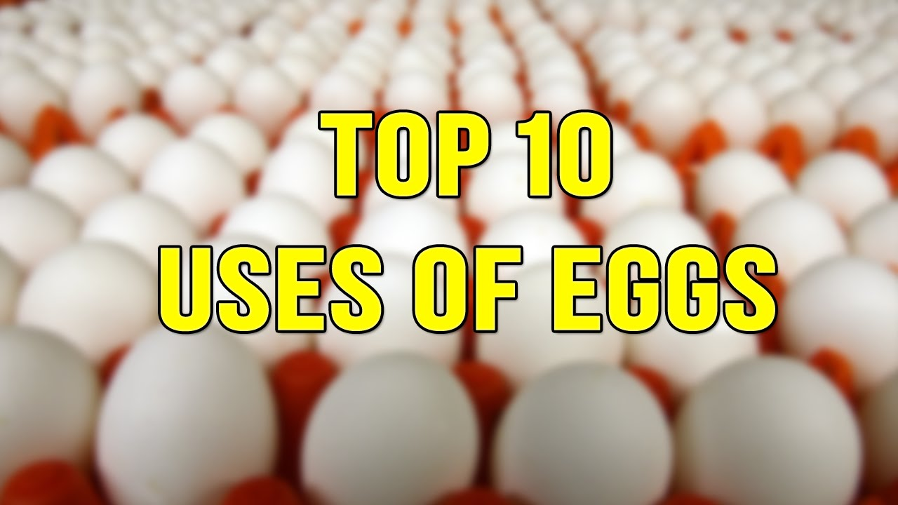 Top 10 Uses of Eggs | Health Tips | Beauty Tips | Skin Care, Hair Fall