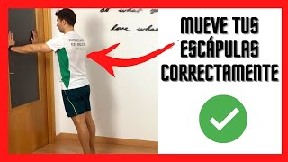 Retracción escapular en la pared - Ejercicio para el serrato anterior