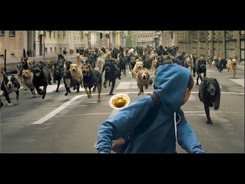 Фильм Белый Бог ( 2018 ) -  Драма , Триллер ,Ужасы / Психологическая драма с остросюжетным триллером