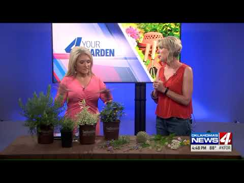 4 your garden: Strategies to attract visitors to your garden
