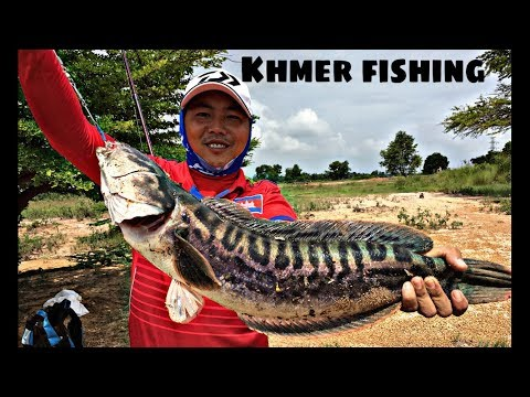 Khmer Fishing by hands-hunter Videos-How to Catch Fish - Net Fishing Videos at Prey Veng Province