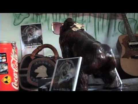 Jonny Fritz - The Life of a Bear