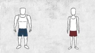 видео Красные и белые мышечные волокна