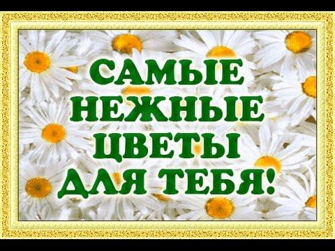 Цветы для девушки. Красивая музыкальная открытка с цветами!