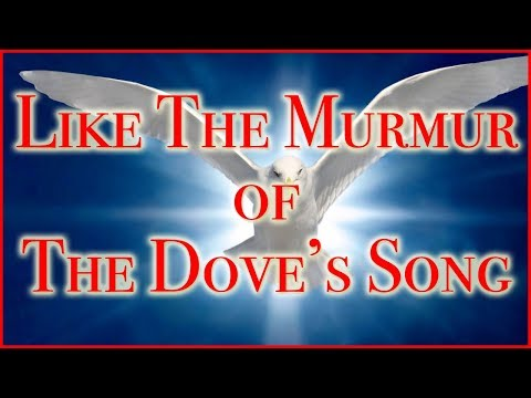 Like The Murmur of the Dove's Song - Bridegroom