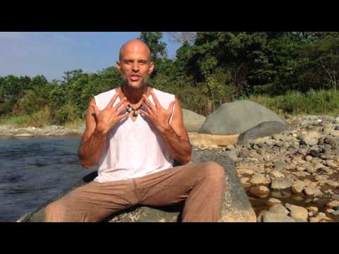 Welcome to the Conscious Living School