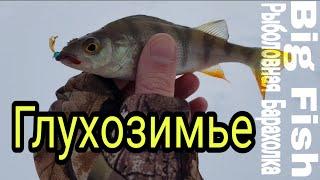 Рыбалка в глухозимье 2019( Орловская область) мормышка, мотыль!