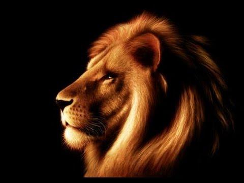 Www Leo