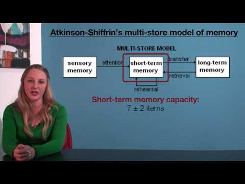 VCE Psychology - Atkinson-Shiffrin's Multi-Store Model of Memory