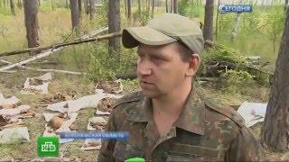 Эксгумация на расстрельном полигоне НКВД.