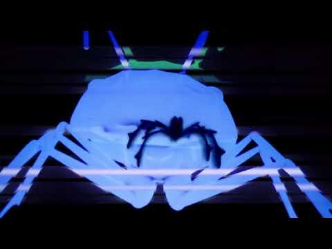 Parlour - Resist Ants (Official Video)