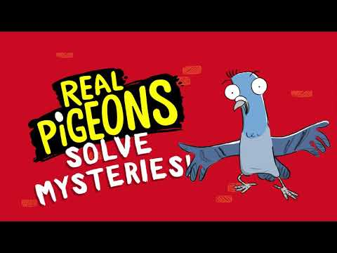 Real Pigeons Fight Crime Video Trailer | Andrew McDonald and Ben Wood