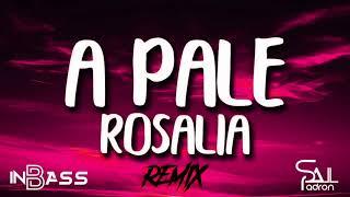 Apale-DJ Slau & In Bass feat. Rosalía (Bootleg)
