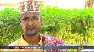Saab Tv Waxaanu Diirada Saarnaa Dhacdooyinka Saameynaya Nolosha Dad...
