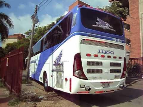 velotax 11160