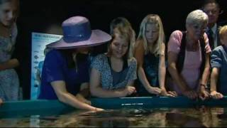 Summer Tour 2011 - Hirtshals Thumbnail