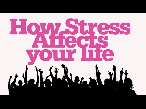How Stress Affects Your Life - The Negative Impact of Stress on Your Life