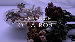 ESSENCE OF A ROSE ASMR