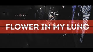 CSBR Live: Flower in my lung (live at CSBR fest 2015. Teatr club)
